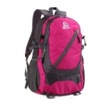 Laptop Backpack - Pink